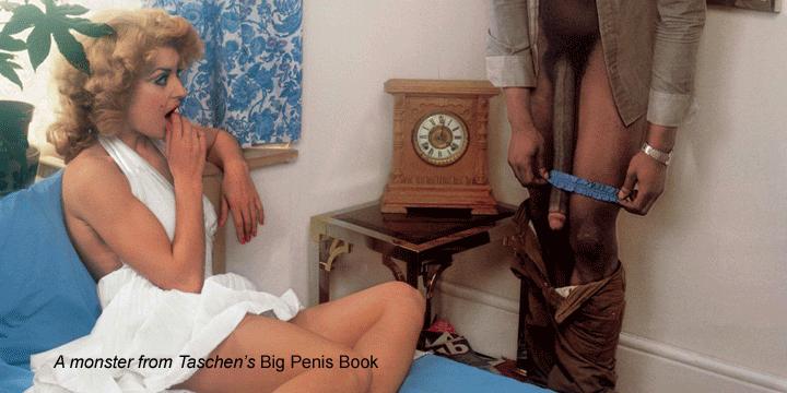 Taschen Big Penis Book 3D