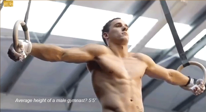 Gay Gymnast